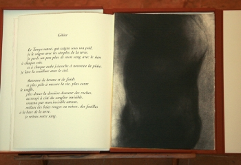 ANNÉE, poèmes inédits de Philippe Jaccottet