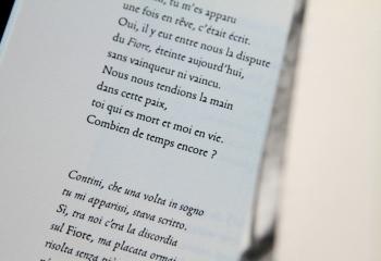 Novénaires de Remo Fasani